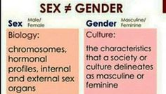 An important distinction Just Be You, How Are You Feeling, Feminist Af, Smash The Patriarchy, Genderqueer, Social Issues, Oppression, Transgender, Equality
