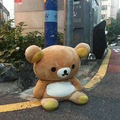 Cute Stuffed Animals, Cute Animals, Cute Memes, Funny Memes, Bizarre, Sad Day, Rilakkuma, Wholesome Memes, Mellow Yellow