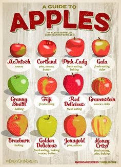 Apple Guide- for baking, sauces, pies and fresh eating! I use Braeburn, Granny Smith, and Honey Crisp for pies though!