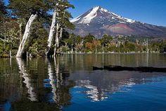 Volcan Llaima reflected in Laguna Caprén, Conguillio National Park, IX Region, Chile