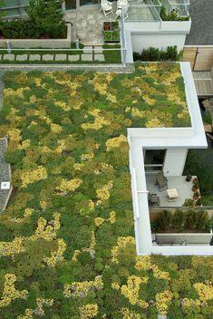 Pergola Ideas For Patio Code: 4003909458 Pergola Ideas For Patio, Deck With Pergola, Covered Pergola, Diy Pergola, Pergola Plans, White Pergola, Pergola Swing, Gazebo Roof, Patio Roof