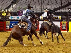 team roping, my boy's a healer, and good :)