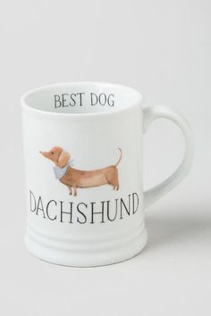 The Dachshund Best Dog Mug is the perfect mug for the pet lover in your life! This ceramic mug is 12 ounces and perfect for your favorite morning cup of coffee or tea! Best Dog Breeds, Best Dogs, Terrier, Dachshund Love, Dachshund Puppies, Daschund, Weenie Dogs, Dog Training, Training Online
