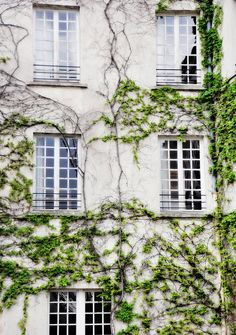 Traverse   Paris Landscape Photography Print by by LeighViner