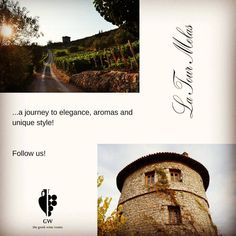 A part of our Mystic Purple Wine Trips! (www.gw-thegreekwineroutes.com) 🍇 #winedestinations #luxurytravel #greece #greekwine #greekwineculture #winelover #winelands #gwwinetrips #oenotourisme #wine #greeksummer #visitgreece #winetravel #wineexperience #winetasting #latourmelas Purple Wine, Plum Purple, Gw, Wineries, Luxury Travel, Wine Tasting, Mystic, Greece, Trips