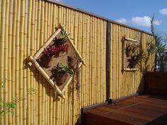 Quintal com bambú: lindo e original