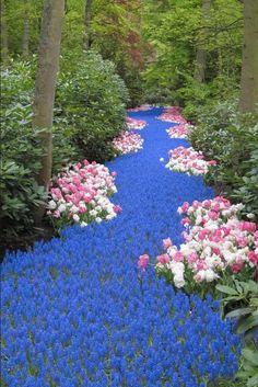 Keukenhof záhrady v Holandsku