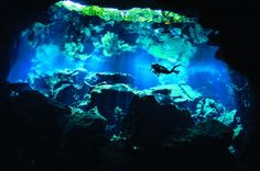 Few environments are as exciting — or as challenging — for underwater photographers as the sinkholes and underground caverns typified by Mexico's cenotes or Florida's freshwater springs. The seemingly limitless visibility, combined with abundant and unusual aquatic life and striking cave formations, makes them perfect for underwater photography.
