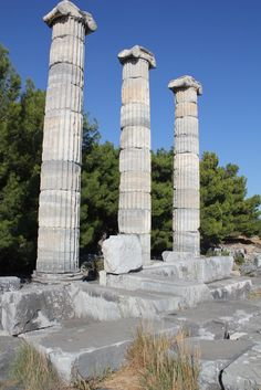 columns of Temple of Athena at Priene | Flickr - Photo Sharing!