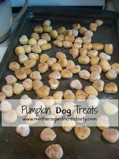 I love these dog treats (so does my pup).  I found the recipe in a Rachel Ray magazine a few months ago.  It is really simple, and very...