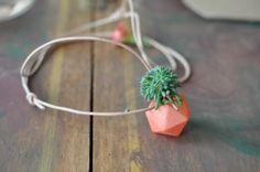 Mini Icosahedron Tangerine by Wearable Planter Small Plants, Air Plants, Diy Jardin, Diy Planters, Clay Planter, Cute Diys, Miniatures, Diy Crafts, Crafty