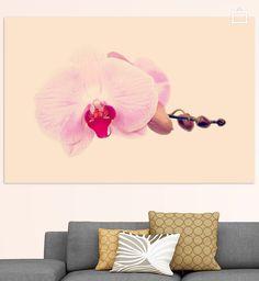 Neu in meiner Galerie bei OhMyPrints: GENTLE ORCHID  II #kunst #fotografie #orchidee #art #rosa #pink #blumen #photography #blossom #gentle #piaschneider #ohmyprints