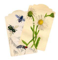 Wild@heart: Friday freebie - Daisy and bee tags