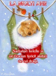 Sărbători fericite şi un Crăciun fericit alături de cei dragi.