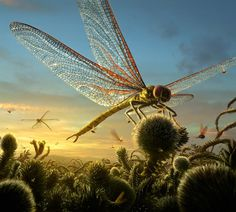 Meganeura was a monster dragonfly of the Carboniferous, the 'Queen of the Carboniferous Skies', with a stunning wingspan (for any dragonfly) of over 70-100 cm (2.3-3.3 inches).