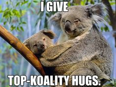 I give top-koality hugs.
