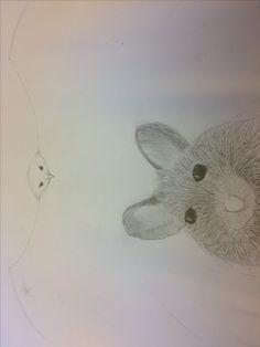 Vandaag heb ik een muis gemaakt die in de tekening word gepakt door de roofvogel
