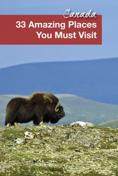 Travel to Canada | Canada is the second largest country in the world so it is not surprising that it is full of natural wonders. If you are looking to visit here are 33 places from our 13 provinces and territories you must visit when exploring Canada.