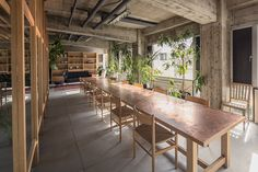 Offices Designed for its Staff to Maintain a Natural Communication