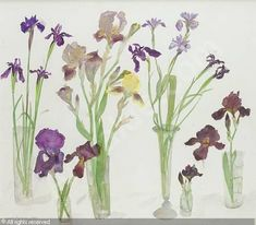 Elizabeth Blackadder