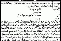 Career Opportunity (High Court Lahore) - New Jobs Portal