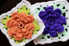 A variation of the granny square around a Pretty Little Flower