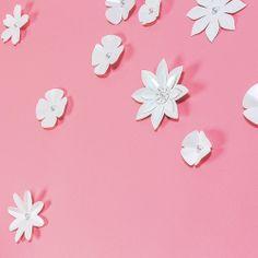 Décor mural Stickers 3D Nuée de Fleurs Blanches © Emma Roux
