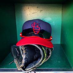 St. Louis Cardinals Cardinals Baseball, St Louis Cardinals, Riding Helmets, Hats, Facebook, Image, Hat, Hipster Hat