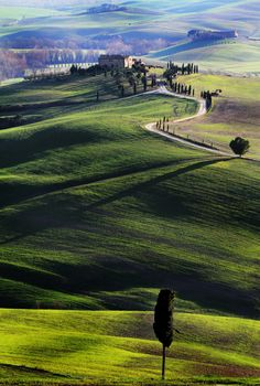 The long shadows of the evening in Tuscany