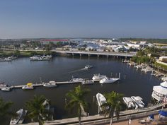 View from Bayfront - Terese DeLuca Realtor