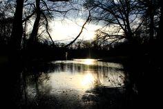 Sunset at Sonsbeek Park, Arnhem
