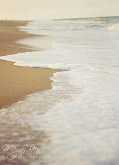 Virginia Beach. https://www.facebook.com/MReneePhotography