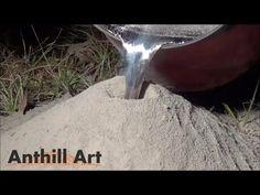 Video: Fire-ant colony + molten aluminum = incredible art   NOLA.com