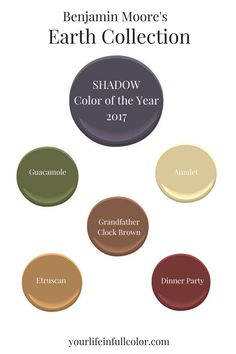 Benjamin Moore's Shadow 2117-30 spices up an earth tone palette pronto! Guacamole 2144-10, Amulet AF-365, Grandfather Clock Brown 2096-30, Etruscan AF-355, Dinner Party AF-300.