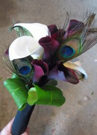 Calla lillies and peacock feathers