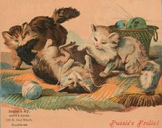 This is a sweet Victorian advertising card.  This card was from a boot and shoe store in Baltimore and features 3 playful kittens amusing themselves with the knitting yarn!XXXOOO