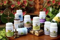 Nature has gifted us herbs and natural medicines for almost every ailment. For centuries, people have used these remedies to cure illnesses. However, in the recent past, there has been a rise in the allopathic medications that primarily use chemicals to treat ailments.