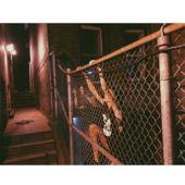 Anja Rubik sur les toits de New York, Karlie Kloss à la découverte de Moscou, Rianne Van Rompaey sur la plage de Shelter Island… Cette deuxième semaine de juin, les tops en vogue s'offraient un avant-goût de l'été en prenant le large. Tour d'horizon de leurs meilleurs moments à travers les différents filtres Instagram.