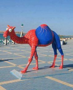 Spider Camel - Imgur