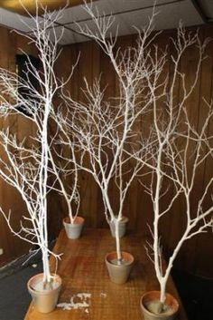 Walsy wedding Winter cocktail Decoration - White trees with a little sparkle and silver base. Fill base with sand, rocks, or dirt. Decorate sparingly if desired. Diy Wedding, Wedding Ceremony, Wedding Flowers, Wedding Day, Wedding Trees, Wedding Blue, Lighted Branches Wedding, Tree Decorations Wedding, Luxury Wedding
