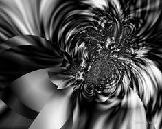 """""""Motion in Black and White"""" fractal abstract created in Sterling 2.  www.redbubble.com/people/danaroper"""
