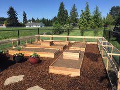 Backyard Ducks, Backyard Chickens, Garden Yard Ideas, Garden Projects,  Backyard Ideas, Ranch Farm, Farmhouse Garden, Chicken Runs, Future Farms