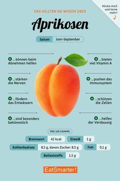 Aprikose   EAT SMARTER
