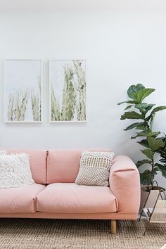 Interiors Inspiration: Blush Pink » Wolf & Stag