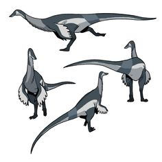 Feathered Dinosaurs, Jurassic Park World, Dinosaur Art, Prehistoric Creatures, Drawing Stuff, Prehistory, Creature Design, Badass, Concept Art