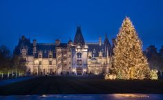 There's a VERY special story behind the #Christmas tree that adorned #Biltmore House's Front Lawn in 2012.