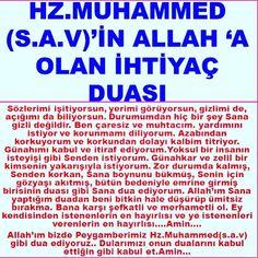 Hafiz, Islam Quran, Allah, Pray, The Cure, Religion, Faith, Dogs, Life