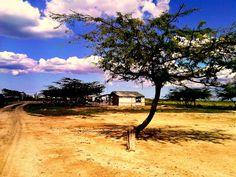 Paisajes que interactuan con la vida indígena Wayúu