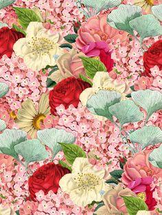 lovestruck by Oh Babushka, via Behance