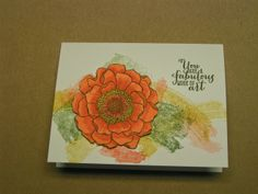 Stampin' Kat: Magnificent Bloom/ email weirdness??
